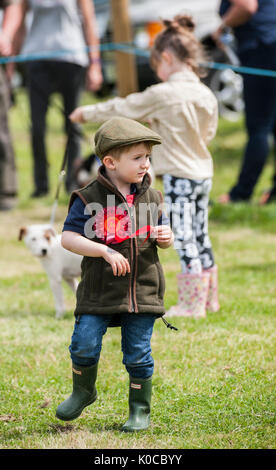 The Barlow Hunt Dog Show - A young boy in the show ring waiting for dog to come to him - Stock Image