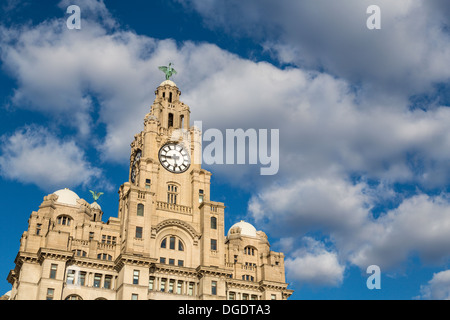 Liver Building Liverpool England - Stock Image