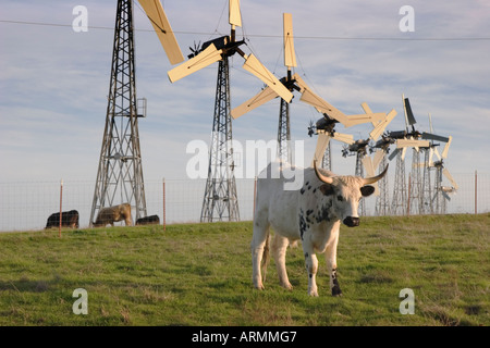 Cattle and windmills at Altamont Pass, Alameda County, California, USA - Stock Image