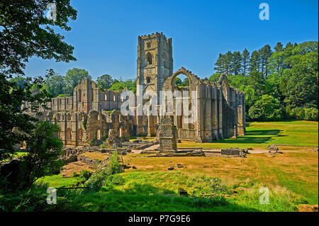 The ruins of Fountains Abbey in North Yorkshire under a clear blue sky. The abbey was largely destroyed during King Henry VIII's reformation. - Stock Image