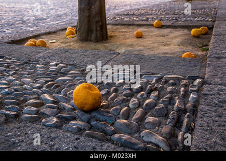 RONDA, ANDALUSIA / SPAIN - OCTOBER 08 2017: ORANGES ON ROCKS - Stock Image