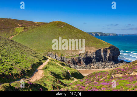 Cornish Cliffs at Porth Chapel Beach and the South West Coast Path, Cornwall, UK - Stock Image