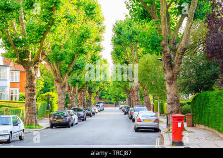 View of street lined with trees in West Hampstead of London - Stock Image