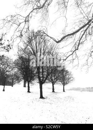 Primrose Hill, Winter, London - Stock Image