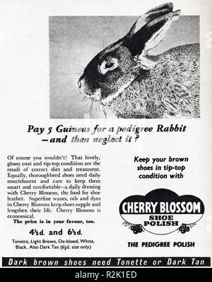 Original 1950s vintage old print advertisement from English magazine advertising Cherry Blossom shoe polish circa 1954 - Stock Image