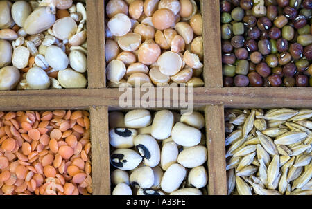 Different dry peas and lentils in wooden square compartments - Stock Image