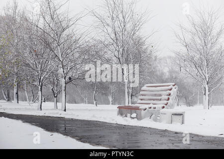 Snow-covered winter park and benches. Park and pier for feeding ducks and pigeons. The snow covered the autumn park. - Stock Image