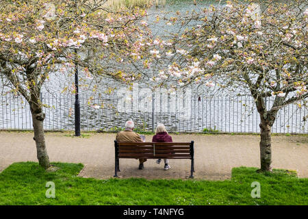People sitting on a bench overlooking a lake in Trenance Gardens in Newquay in Cornwall. - Stock Image