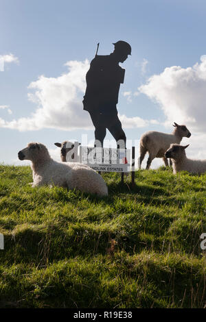 Lest We Forget WW1 memorial surrounded by sheep in Yapton & Barnham, West Sussex - Stock Image