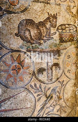 Italy, Friuli Venezia Aquilee, Aquileia, Patriarchal Basilica of Santa Maria Assunta, mosaic from 4th century - Stock Image