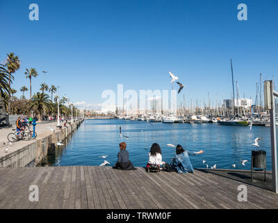 BARCELONA, SPAIN - MARCH 3, 2019: three female tourists rest surrounded by seagulls in the old port of the city of Barcelona. Catalonia, Spain. - Stock Image