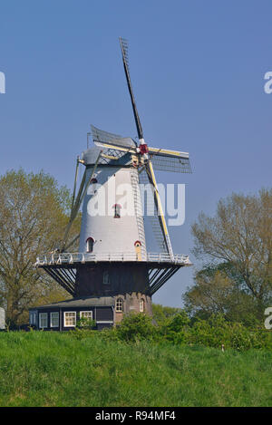 Windmill on the outskirts of the small coastal town of Veere, Zeeland, Holland, Netherlands - Stock Image