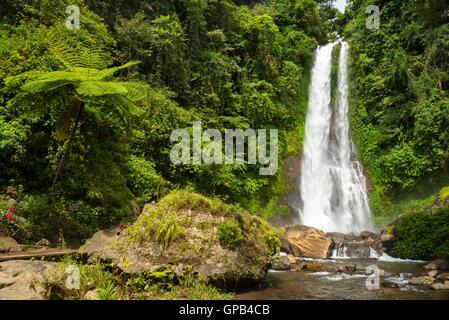 Amazing waterfall Git Git, Bali, Indonesia - Stock Image