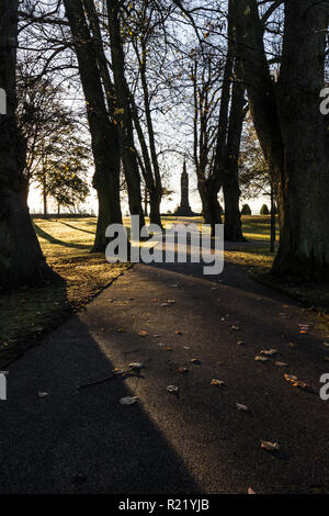 Long shadows cast by trees in early morning light. Wallace Monument at end of pathway in Castle Gardens, Lisburn, N.Ireland. - Stock Image