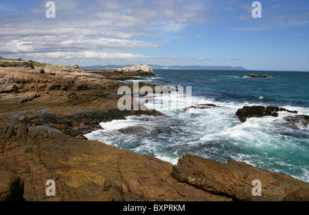 Walker Bay, Hermanus, Western Cape, South Africa - Stock Image