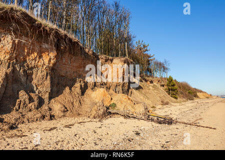 Crumbling cliffs at Cudmore Grove Country Park, East Mersea, Essex. - Stock Image