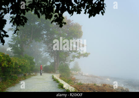 Man looking towards the ocean from the Shore Path in Bar Harbor, Maine, USA. - Stock Image