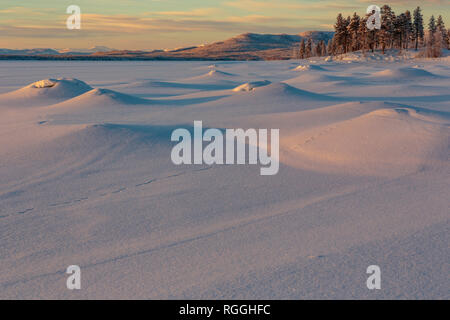 Winter landscape at sunset with nice color in the sky and snowy trees, mountains of Sarek national park in background, Jokkmokk county, Swedish Laplan - Stock Image