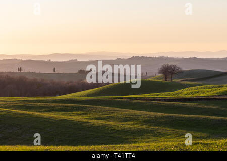 Beautiful view of Tuscany hills at sunset, with mist and warm colors. - Stock Image