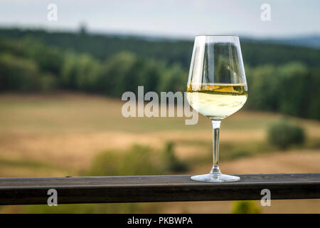 Glass of white wine on a wooden board in beautiful nature - Stock Image