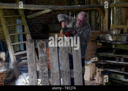 man using a chainsaw in a barn to cut up old wooden pallets for fuel in preparation for the approaching winter season zala county hungary - Stock Image