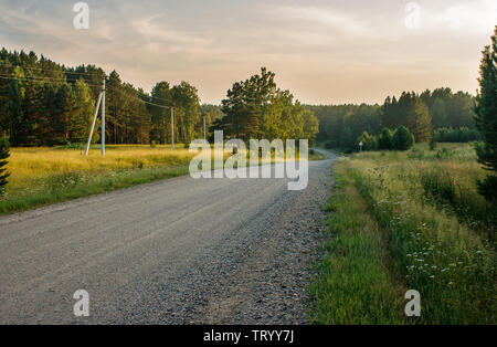 dirt road in the forest in russian siberia on summer sunset - Stock Image