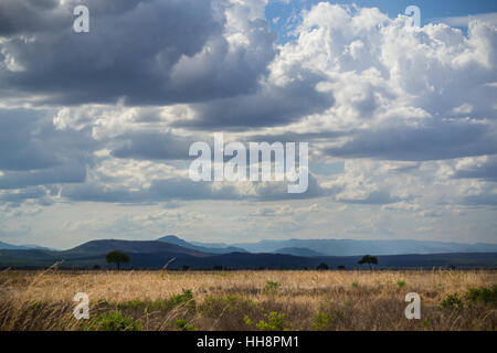 Beautiful African nature, landscape with clouds, trees, mountains, safari - Stock Image