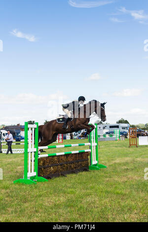 Horse and rider in a show jumping competition at at the Arthington show, West Yorkshire in 2017. - Stock Image
