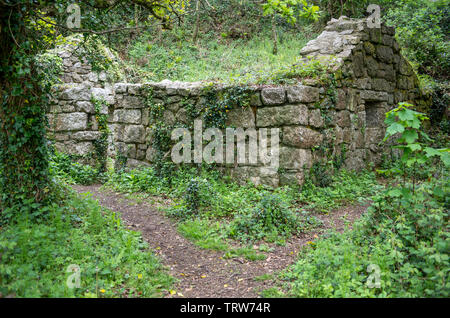 Derelict 19th century industrial building in the Luxulyan Valley, Cornwall, England, UK - Stock Image