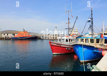 Fishing boats moored in the inner harbour with a lifeboat beyond. Kirkwall, Orkney Mainland, Scotland, UK, Great Britain - Stock Image