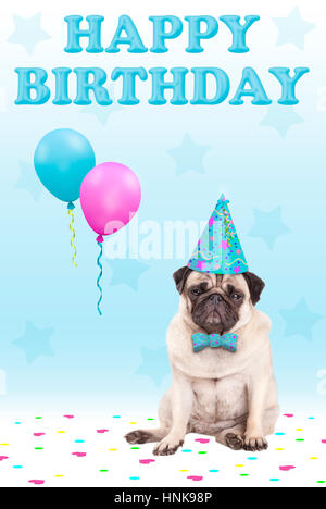 cute grumpy faced pug puppy dog with party hat, balloons, confetti and text happy birthday, on blue background - Stock Image