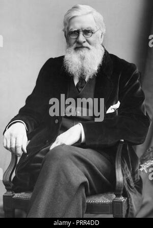 Alfred Russel Wallace, (8 January 1823 – 7 November 1913) was an English naturalist, explorer, geographer, anthropologist, and biologist. - Stock Image
