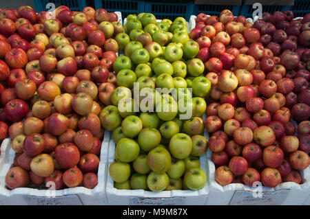 Apples for sale at a produce outlet in Oyster Cove, southern Tasmania, Australia - Stock Image