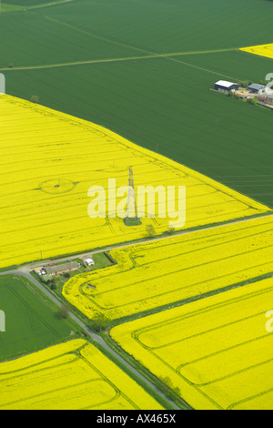 Aerial view of an electricity pylon in the middle of a field of oilseed rape - Stock Image