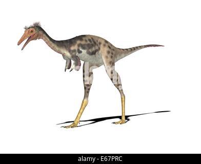 Dinosaurier Mononykus / dinosaur Mononykus - Stock Image