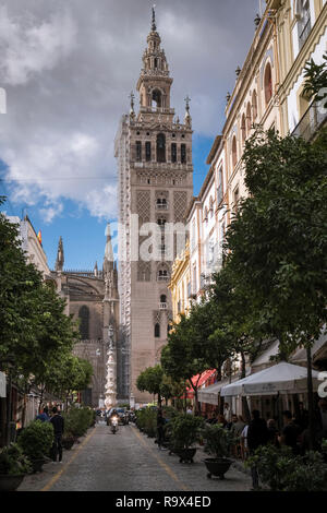 The Giralda bell tower of Seville Cathedral, a local city landmark and UNESCO world heritage site, Seville, Andalucia, Spain. - Stock Image