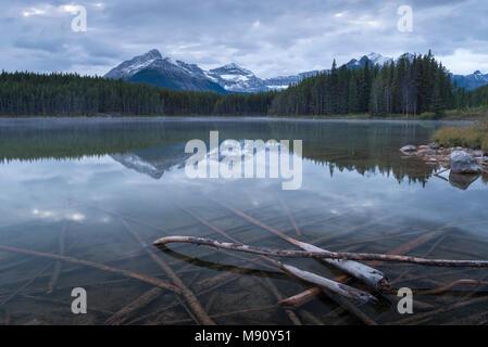 Reflective Herbert Lake in the Canadian Rockies, Banff National Park, Alberta, Canada. Autumn (September) 2017. - Stock Image