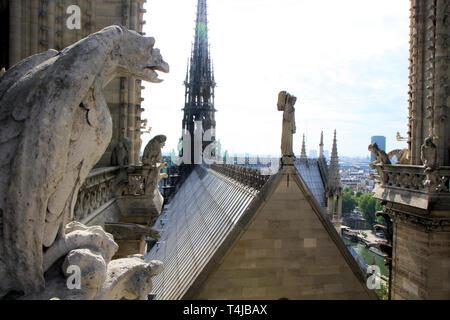 Roof details of Notre Dame de paris, France - Stock Image