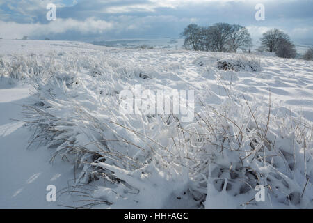 Snow covered moor overlooking Esk Dale above Danby in the North York Moors National Park - Stock Image