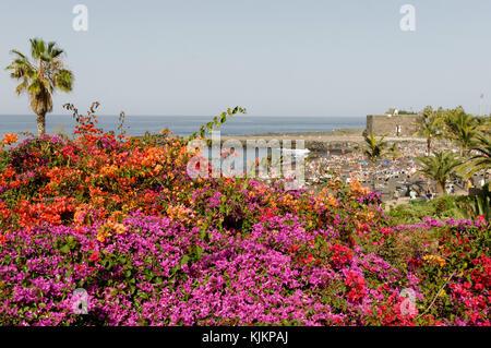 playa jardin puerto de la cruz tenerife canary islands isles canaries beach beaches black sand - Stock Image