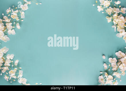 Beautiful and peaceful spring flower blossoms against a blue background. Image shot from top view. - Stock Image