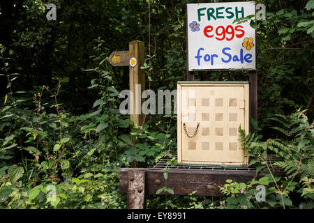 Farm gate sale of eggs - Stock Image