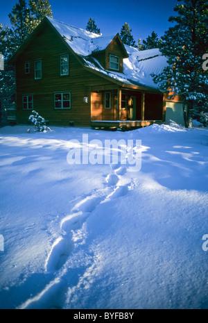 Cabin home in Pagosa Springs, Colorado, USA - Stock Image