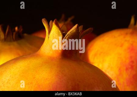 Pomegranates, close-up - Stock Image