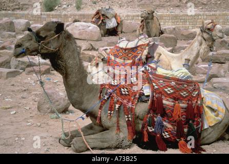 Jordan Petra - Stock Image