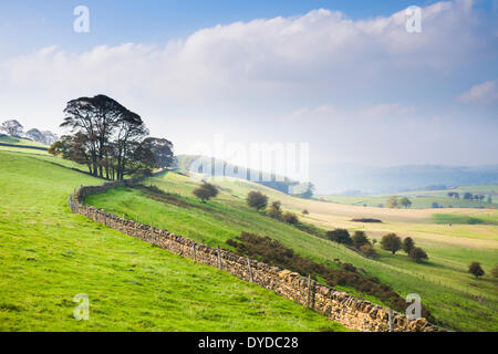 Autumn mists on rolling Derbyshire countryside near Bakewell. - Stock Image
