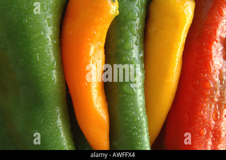 Organic peppers 1 of 3 - Stock Image