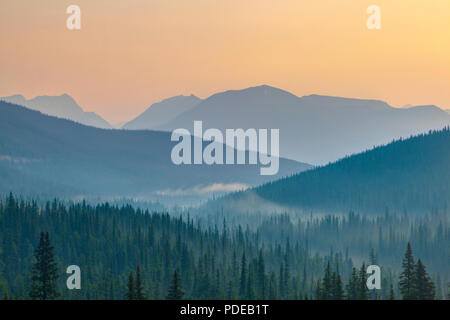 Break of dawn showing golden sunrise at Banff National Park with silhouette of distant mountain ridges and pine trees in the foreground - Stock Image