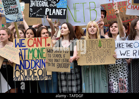 London, UK. 25th May2019. Crowds of schoolchildren surround College Green, Westminster to make their views heard to the world's media during the Fridays For Future climate strike, London Credit: PjrFoto/Alamy Live News - Stock Image