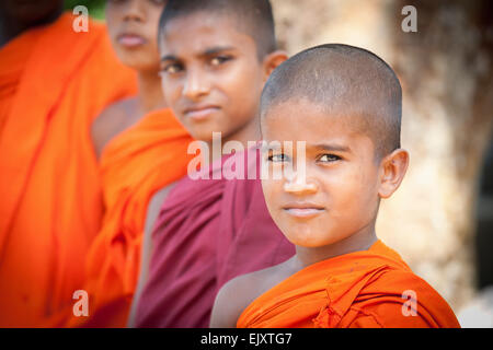 BUDDHIST MONKS AT THE MONASTRY NEAR GALLE - Stock Image